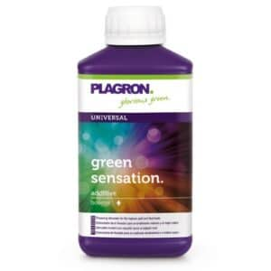 PLAGRON GREEN SENSATION 250 ML